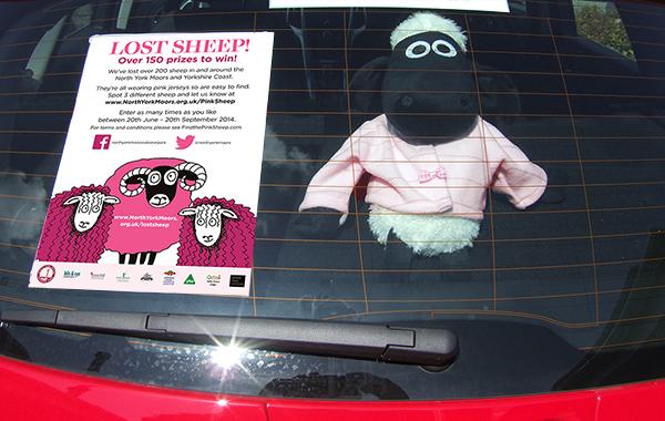 pink sheep - mobile